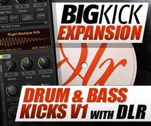 300 x 250 pib big kick expansion dlr