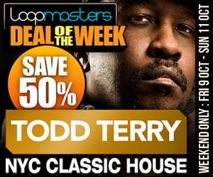 300 x 250 lm deal of the week todd terry