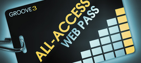 All access pass 1 year