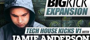 Pib big kick expansion jamie anderson 590 x 332
