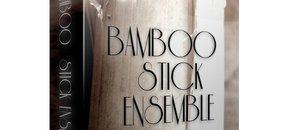 Bamboostickensemble mainimage pluginboutique