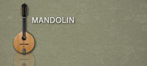 Mandolin main image pluginboutique