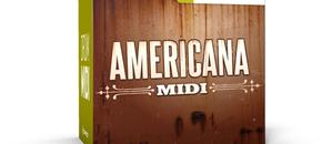 Americana midi box