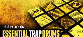 Niche essential trap drums 1000 x 512