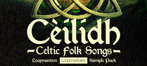 Celtic fiddle   guitar samples rectangle