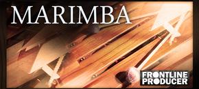 Frontline marimba 1000 x 512