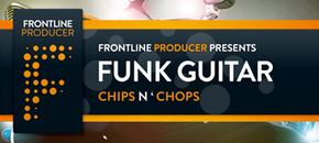 Flp funk guitar site banner