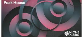 Niche samples sounds peak house 1000 x 512 new pluginboutique