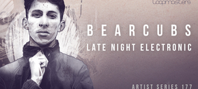 Bearcubs  royalty free electronica samples  atmospheric sounds  downtempo bass 1000 x 512