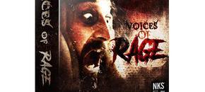 Voices of rage   3d box 1024x1024