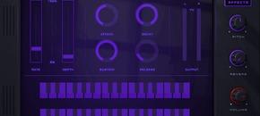 Beatskillz synthwavekz pluginboutique